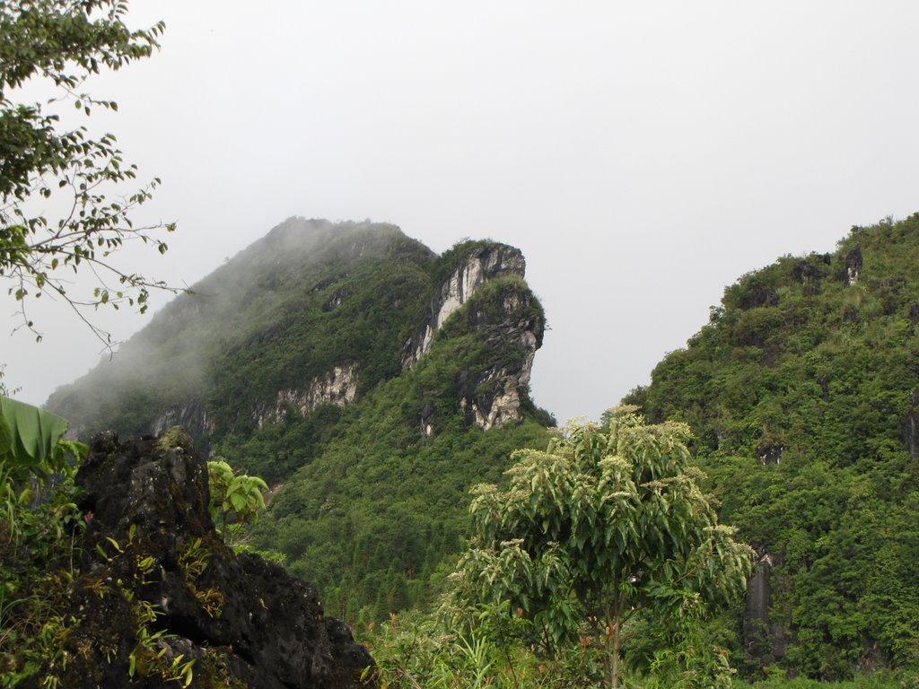 Ham Rong Mountain Sapa, Vietnam