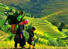 Authentic Vietnam – Classic Tour 15 Days / 14 Nights